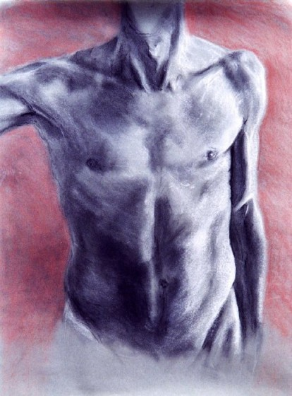 torso2g